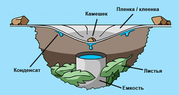 Как получить воду в экстремальных ситуациях