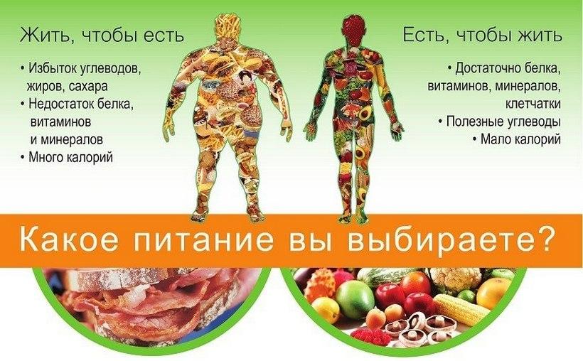 Насколько важно то, что мы едим