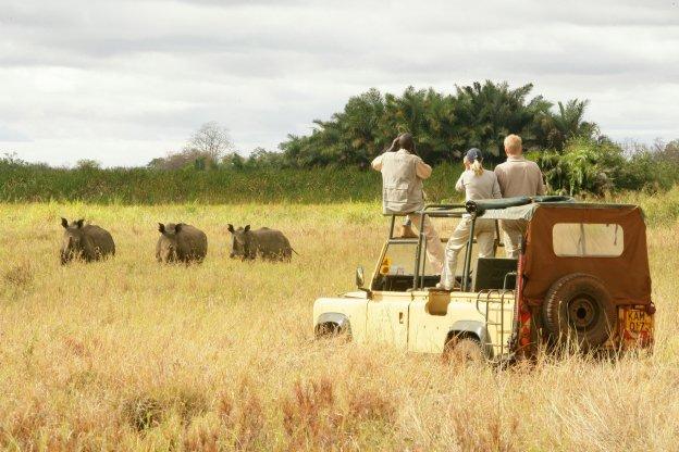 Путешествие в Кению: плюсы и минусы