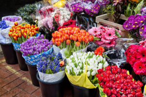 Где купить свежие живые цветы с доставкой
